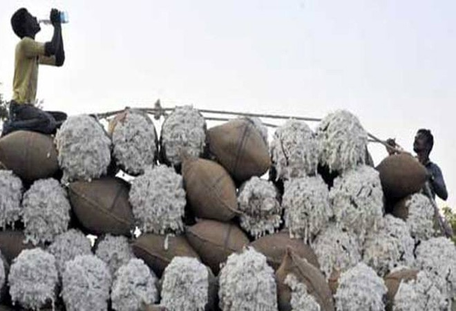 Pakistan may lift ban on import of cotton, sugar from India