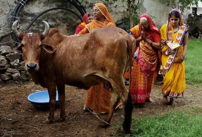 Yogi Adityanath govt's 'gau raksha' cess to make toll tax, alcohol costlier in UP
