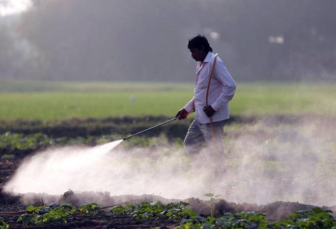 Govt hikes subsidy for non-urea fertilisers, to cost Rs 22,875 cr in FY20