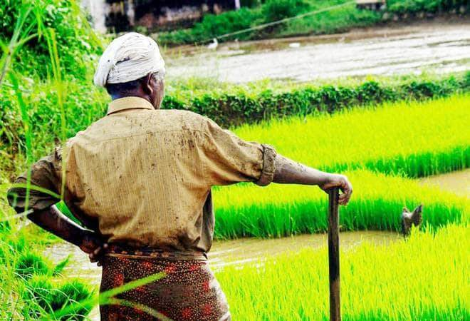 Ficci hails govt for extending PM-KISAN scheme to all farmers