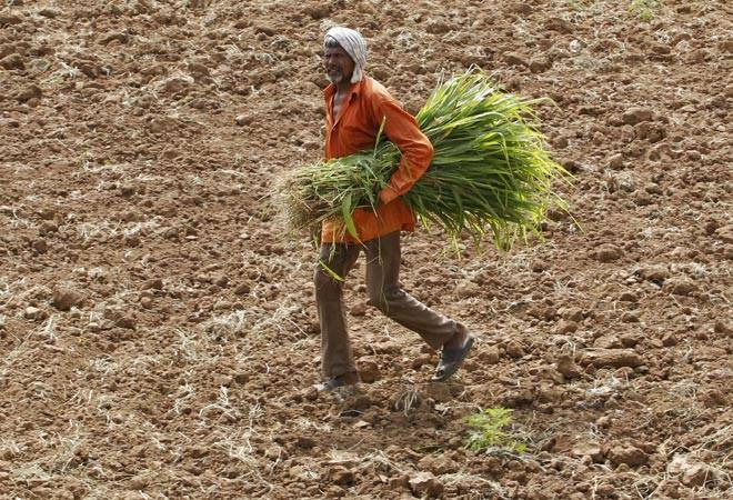 Punjab govt approves debt relief plan for farm labourers; to benefit over 2.85 lakh people