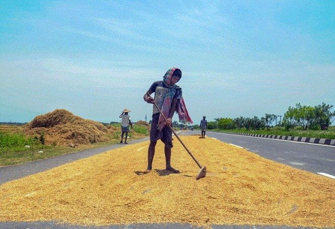 Govt readies farmer friendly norms for directly sourcing agri-produce