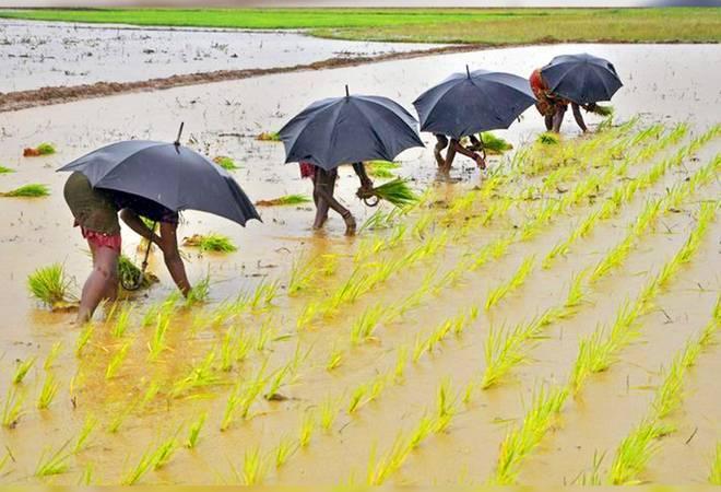 Tranche 2 of COVID-19 stimulus an 'eyewash': Farmers' unions AIKS, AIAWU