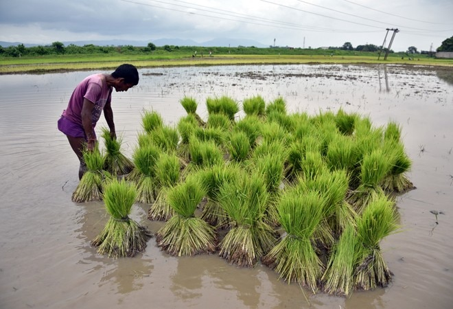 Farm loans worth Rs 4.7 lakh crore written off in past decade: report