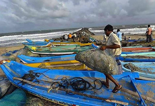 Govt targets $9 billion investment in 5 years for fisheries sector