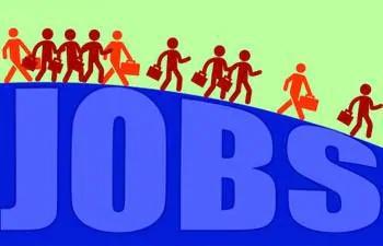 62.38 lakh jobs created till November in FY20: EPFO