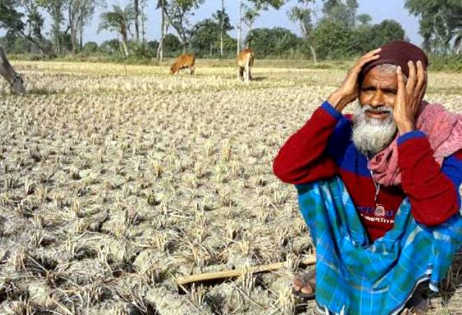 PSB's Gross Non-Performing Assets in agriculture sector surpass Rs 1 lakh crore mark: RBI data