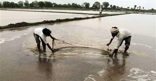 Monsoon hits Kerala, Met dept sees 'sluggish march'