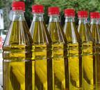 Budget 2021: Centre likely to lay out plan to boost oilseeds output, cut veg oil imports