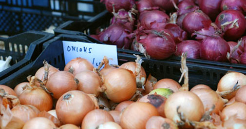 Onion exports fell 81% in Aug after curbs