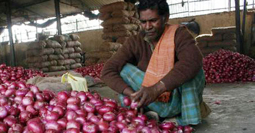 Onion prices soar further during festive season