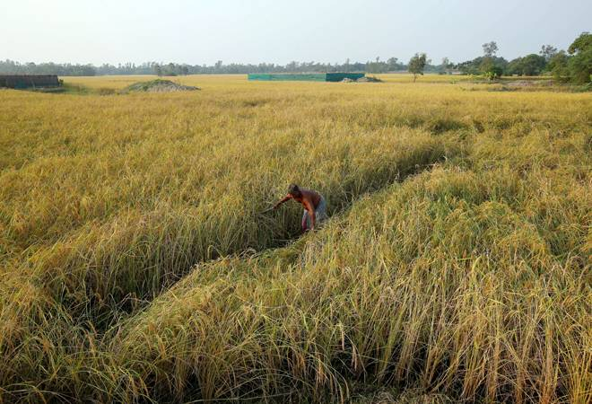 PM-KISAN scheme launched; over 1 crore farmers get first tranche of Rs 2,000