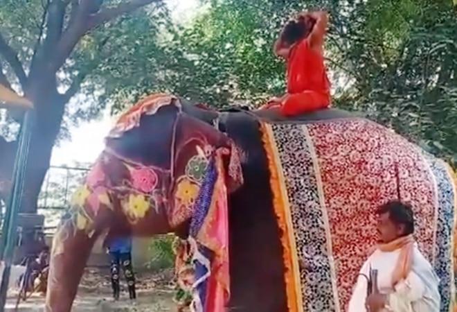 'Inspired by Indian economy': Baba Ramdev falls off elephant; netizens react