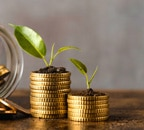 Ask Money Today: Is Rs 20,000 monthly investment enough to retire comfortably?