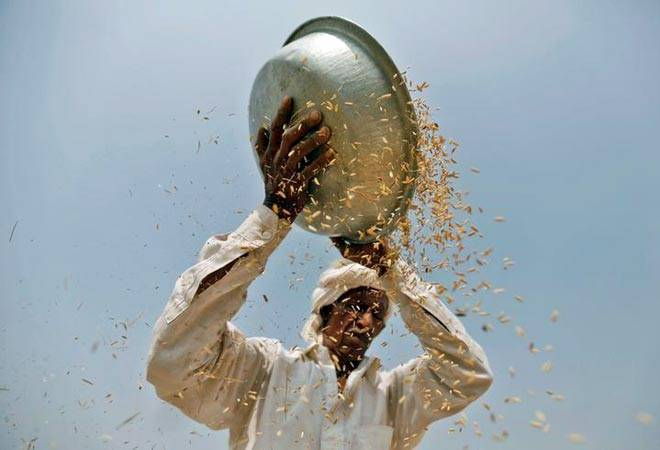 Farm loan waivers: Why it won't end the long-standing Indian agrarian crisis