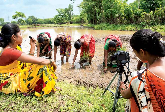 Video production of women farmers sowing paddy seedlings at Thane district in Maharashtra.