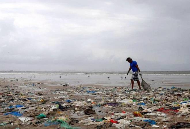 What is single-use plastic, and how does it harm the environment
