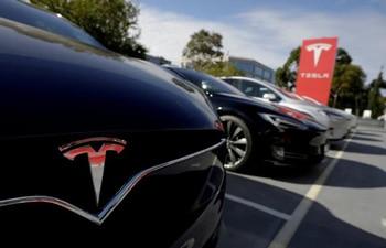 Tesla's orders in China halved in May over increased govt scrutiny