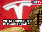Tesla CEO Elon Musk or institutional investors? What drives the Bitcoin price?