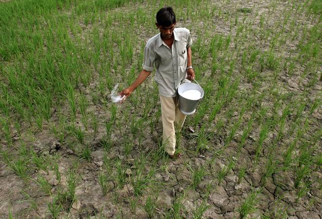 Farmers fear lost crops and income after 'black money' move