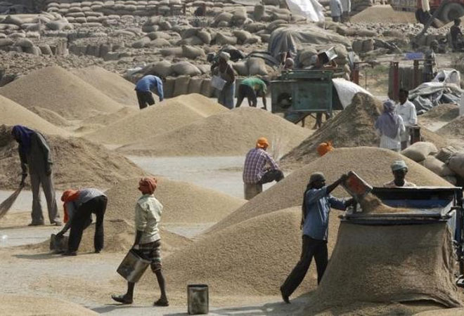 Rabi crops' output seen at 132.78 mts in 2015-16