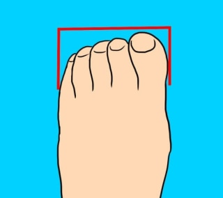 645fb08f99fd The  Peasant Foot  has all toes of practically the same length