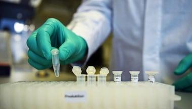 Michelle bachelet, Covidiot, Coronavirus treatment, Coronavirusvaccine