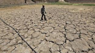 Deforestation, Environmental degradation, Global warming, Climatechange