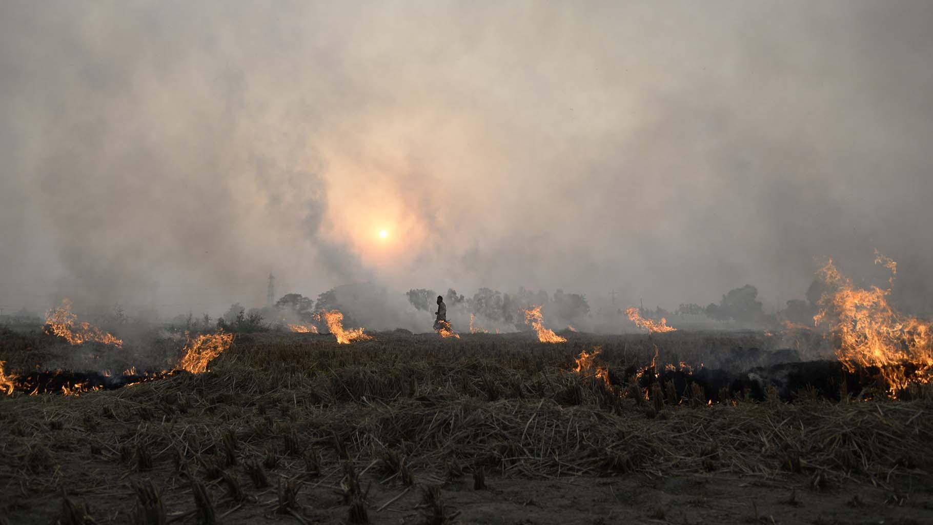 Pollution, Stubble burning, Paddy burning, Farm fires