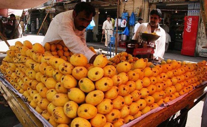 pak-mangoes_081415061213.jpg