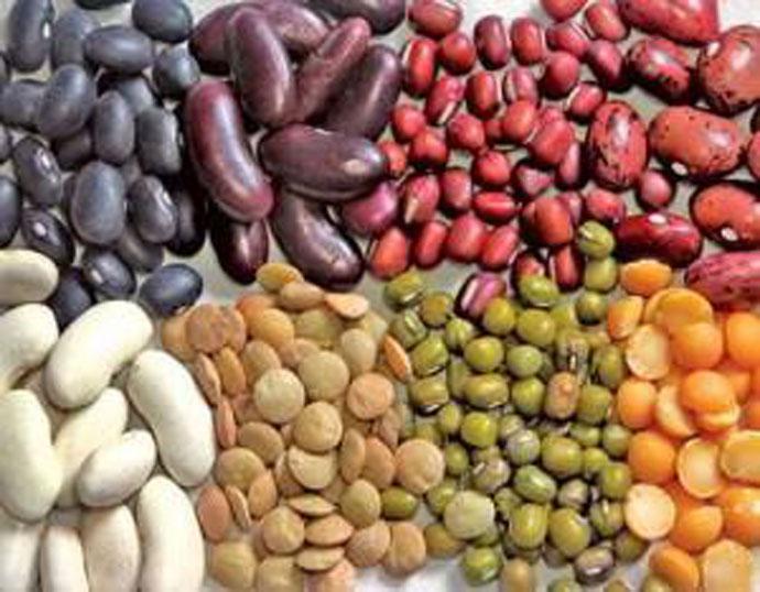 food-beans_022618041439.jpg