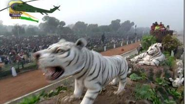 Republic Day, Conservation, Lions, Tigers