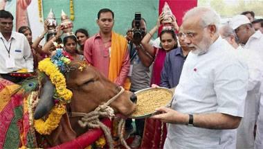 BJP, Gau Raksha Dal, Dalits