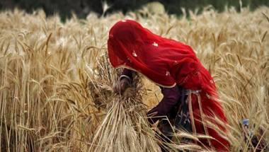 Agriculture, Rural India