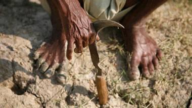 Supreme Court, Farmer suicides