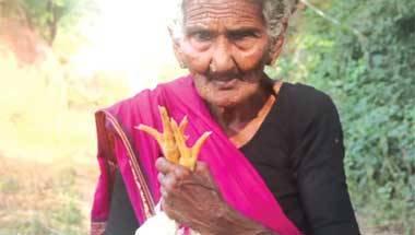 Longevity, Health, Ageing