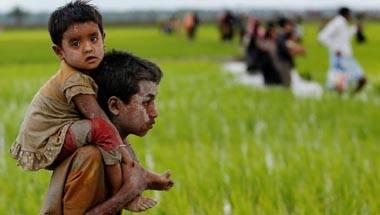 Sri Lanka, Refugee, Terrorist, Rohingyas