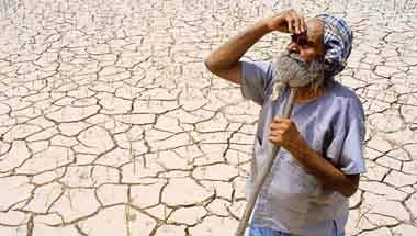 BJP, Modi, Agricultural sector, GDP growth