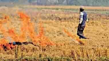 Stubble burning, Smog, Punjab Farmers, Farm distress