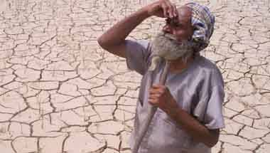 Maharashtra farmers, Farm loan waiver, Farm distress, Farmer suicides