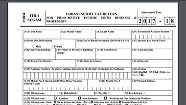 Economy, Business, Income Tax Returns, Itr filing