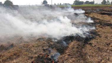 Agriculture, Stubble burning, Pollution, Delhi Smog