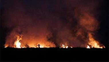 Farmers, Captain Amarinder Singh, Punjab, Stubble burning
