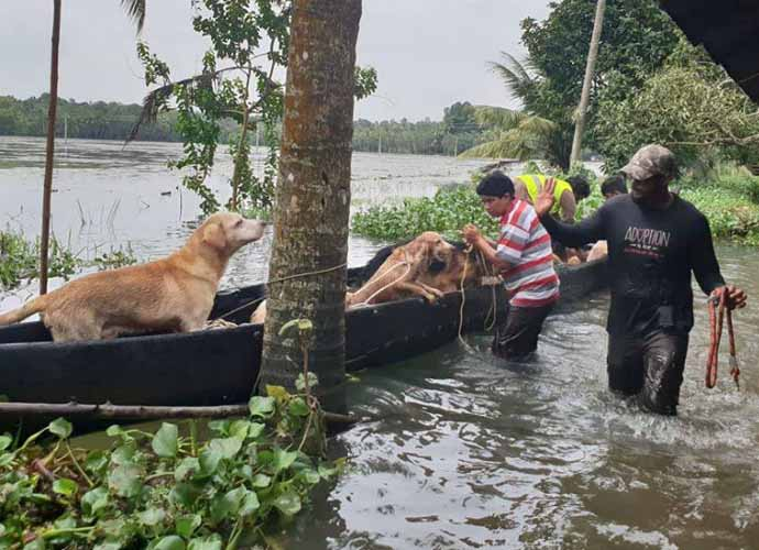 kerala-flood-690_082118060050.jpg