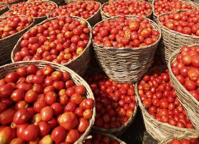 tomato-690_081818060835.jpg