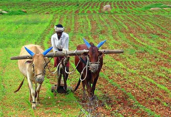 farmers_013119032517.jpg