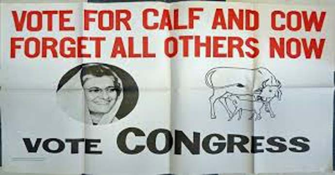 vote-for-calf-and-co_031719114644.jpg