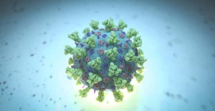 main_coronavirus_reu_052120115301.jpg