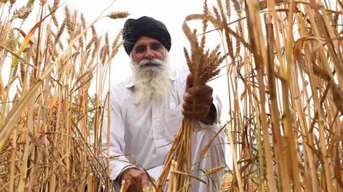 main1_punjab-farmers_092920023838.jpeg