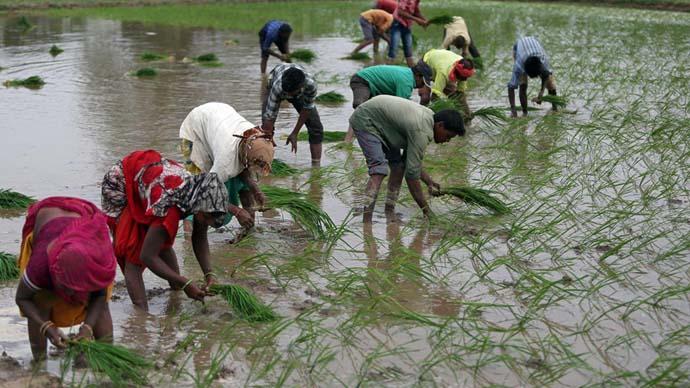 main_farmers_reuters_092920053105.jpeg
